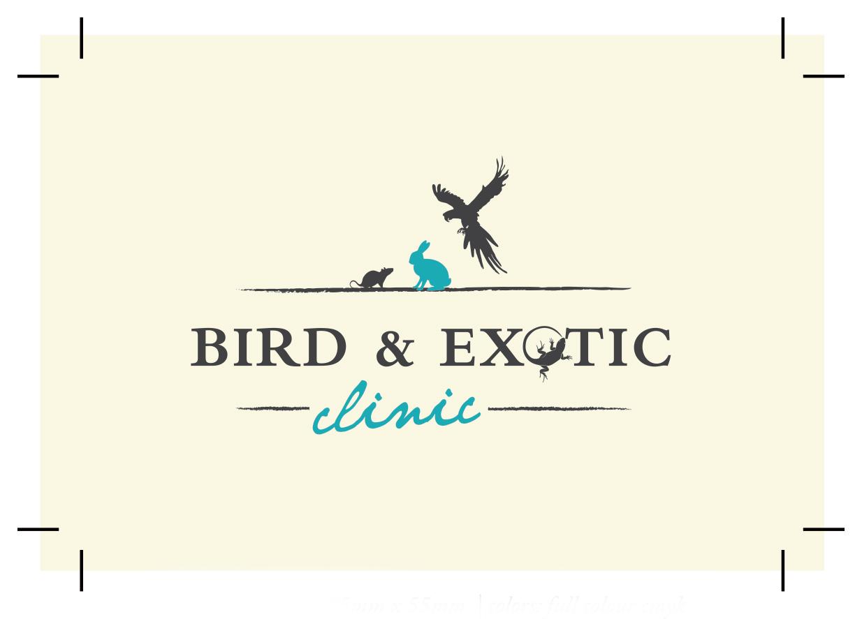 birdexotic clinic bcard final copy 1 - LOGO DEVELOPMENT